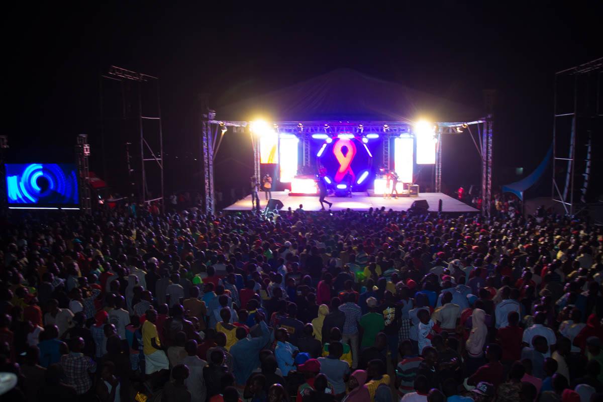 Revelers attending the concert